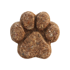 Introducing… Little BigPaw Oven Baked Treats for Dogs
