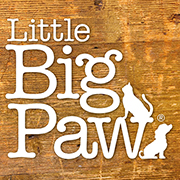 Events – Little Big Paw