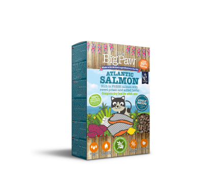 Atlantic Salmon Complete dry food for Adult Cats 350g